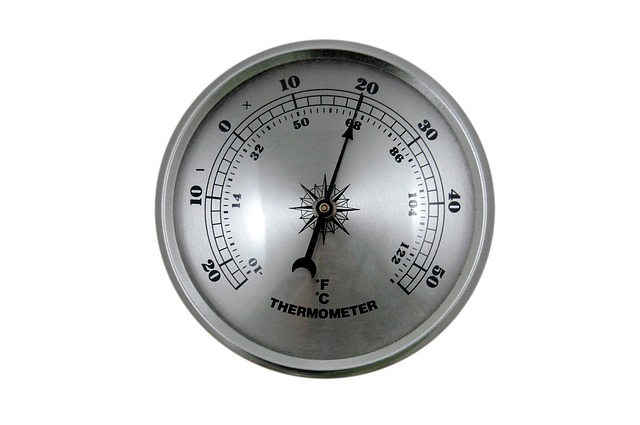thermometer-428339_640