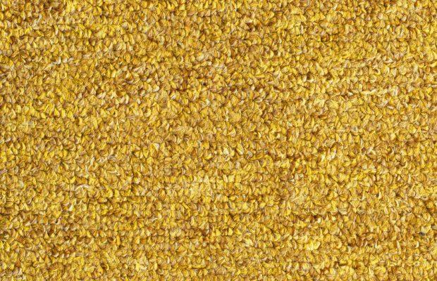 53689547 - carpet texture close-up, yellow furry carpet texture background