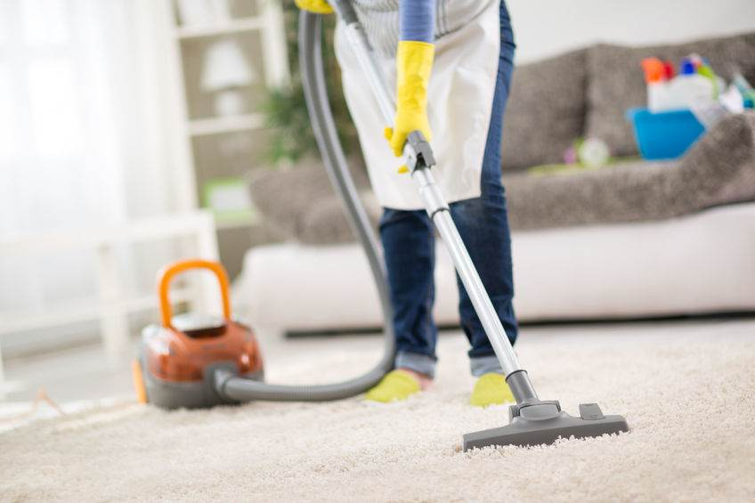 54016312 - housewife from cleaning service cleans carpet with vacuum cleaner
