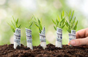 Dělat svět hezčím a ještě na tom vydělávat – to je hlavní myšlenka státních ekologických dotací.